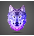 Wolf low poly Side light purple vector image