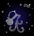 zodiac aquarius is the starry sky vector image vector image