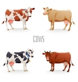 Different cows vector image