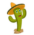 cartoon mexican cactus character vector image vector image