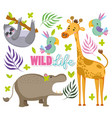 cute wildlife animals vector image