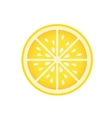 Delicious orange fruit isolated icon vector image vector image