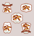 the theme nuts vector image vector image