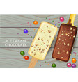 white chocolate and milk chocolate ice creams vector image vector image