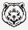 bear head cartoon vector image vector image