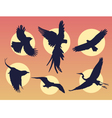 Bird in flight silhouette vector image