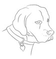 black and white sketch dog vector image