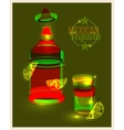 Bottle of tequila and shot with lime abstract vector image vector image