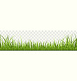 grass border panorama natural lawn or vector image vector image