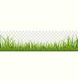 grass border panorama natural lawn vector image vector image