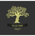 Hand-drawn graphic olive tree vector image vector image