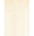 paper texture vertical size vector image vector image