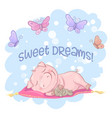 postcard cute pig flowers and butterflies cartoon vector image vector image
