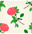 seamless texture pink rose flower twig vector image vector image