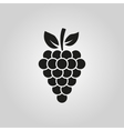 The grapes icon Grape symbol UI Web Logo Sign vector image