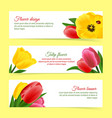 Tulip banner set vector image vector image