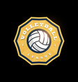 volleyball abstract shape logo modern vector image vector image