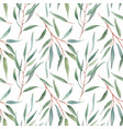 watercolor australian floral pattern vector image vector image