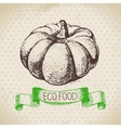 Hand drawn sketch pumpkin vegetable Eco food vector image