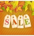 Autumn Sale Concept in Flat Design vector image vector image