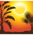 Background with palm trees silhouette at sunset vector image