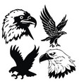 eagle emblem isolated on white vector image vector image