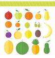 Flat elements for web design fruits and berries vector image vector image