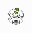 parsley branch logo round linear logo parsey vector image vector image