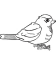 simple black and white robin vector image