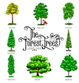 Summer Green Forest Tree isolated on white vector image vector image