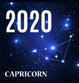 symbol capricorn zodiac sign with new year vector image
