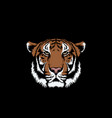 tiger isolated on black background vector image vector image
