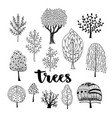 trees set hand drawn collection of doodle trees vector image vector image