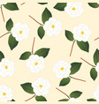 white camellia flower on beige ivory background