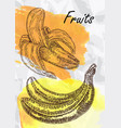 banana fruits vector image vector image