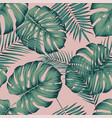 seamless tropical pattern with leaves monstera vector image vector image