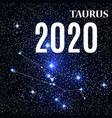 symbol taurus zodiac sign with new year and vector image
