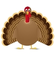 Turkey bird isolated on white background vector image vector image
