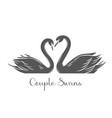 couple swans glyph icon vector image
