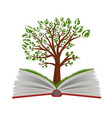knowledge tree from open book vector image vector image