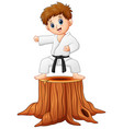little boy doing karate on vector image