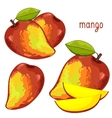 Mango Isolated vector image vector image