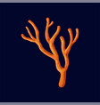 orange tropical coral on a vector image