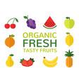 organic fresh tasty fruits concept set of flat vector image vector image