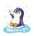 penguin on an ice floe floats on sea vector image