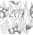 Seamless pattern black and whitePeonies and rose vector image