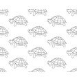 turtle seamless on white background vector image