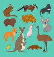australian wild animals cartoon collection vector image