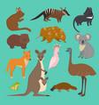 australian wild animals cartoon collection vector image vector image