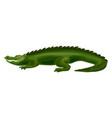 crocodile icon cartoon style vector image vector image